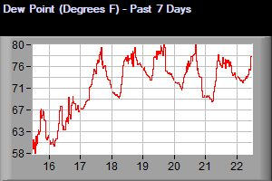 Dew Point Temperature - Past 7 Days